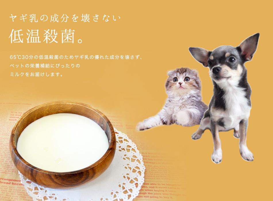 やぎミルク冷凍900ml